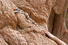 Rockclimber's hands Royalty Free Stock Photography