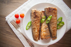 Rockcod on plate. Fried shad with chilli, australian fish Royalty Free Stock Photography