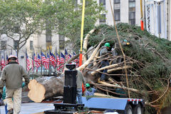 Rockefeller Center Christmas Tree Arrival. NEW YORK - NOVEMBER 12: The arrival and set up of the famous Rockefeller Center Christmas Tree in Rockefeller Center Stock Photo