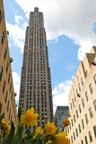 Rockefeller center with flowers Royalty Free Stock Photography