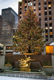 Rockefeller Center Tree Royalty Free Stock Images
