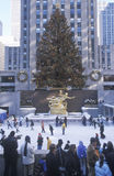 Rockefeller Square with snowy ice skating rink and Christmas tree in mid-town Manhattan, NY Royalty Free Stock Photography