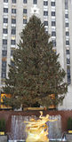 Rockefeller Ześrodkowywa choinki i statuy Prometheus przy Niskim placem Rockefeller centrum w środku miasta Manhattan Zdjęcia Stock