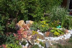 Rockery. With flowers in the garden stock images