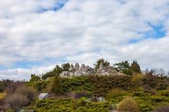 Rockery (alpine garden) in Kyiv botanical garden Royalty Free Stock Photo
