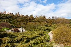 Rockery (alpine garden) in Kyiv botanical garden Stock Image