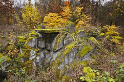 Rockery della foresta Immagini Stock Libere da Diritti