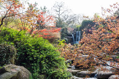 Rockery and Running water royalty free stock image