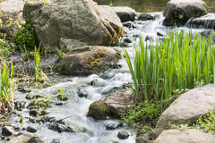 Rockery and Running water Royalty Free Stock Images