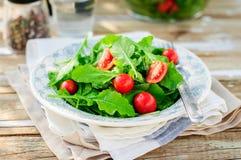 Rocket (Arugula) y Cherry Tomato Salad Imágenes de archivo libres de regalías