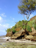Rocket on the beach mombasa kenia blue sky Royalty Free Stock Image