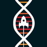 Rocket-Entwicklung beginnen oben Lizenzfreie Stockfotografie