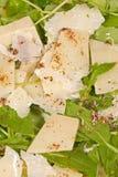 Rocket salad Stock Image