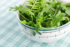 Rocket salad Royalty Free Stock Images