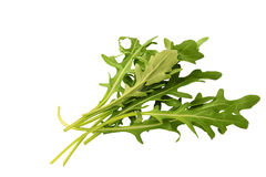 Rocket salad or arugula isolated on white background. Leaf of green rocket salad or arugula isolated on white background as package design element stock photo