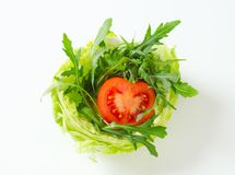 Rocket salad in lettuce bowl Royalty Free Stock Photography