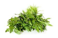 Rocket Salad Isolated Stock Photos