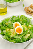 Rocket salad with potatoes and eggs Stock Image