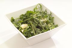 Rocket-Salat Lizenzfreie Stockbilder
