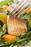 Rocket-Salat mit Tilapiini lizenzfreie stockfotos