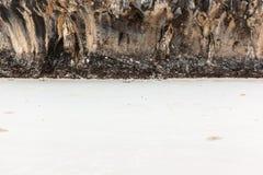 Rockface on the beach Stock Photos