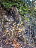 Rockface in the quarry at Bromberg Royalty Free Stock Photography