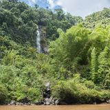 Rockface, Rainforest and Waterfall Royalty Free Stock Photography