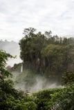 Rockface wyspa w rzece od iguazu spada widok od Argentina obraz stock