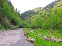 Rockfall em uma estrada principal Imagens de Stock Royalty Free