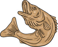 Rockfish Jumping Up Drawing. Drawing sketch style illustratoin of a rockfish also called striped bass ,Morone saxatilis, Atlantic striped bass, striper Royalty Free Stock Image