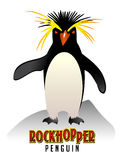 Rockhopper Penguin illustration Royalty Free Stock Images
