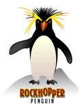 Rockhopper Penguin illustration. Vector drawing of Rockhopper Penguin Royalty Free Stock Images