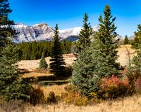 Осень в Rockies стоковое изображение rf