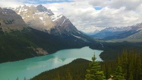 Rockies. Canadian rocky mountain in the summer royalty free stock photo