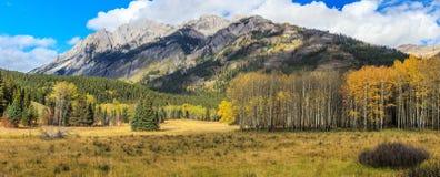 rockies för gångallé för nationalpark för banff bow kanadensisk dal Royaltyfria Bilder