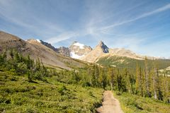 Rockies and Parker Ridge Trail. Lonely Parker Ridge Trail in the Canadian Rockies Royalty Free Stock Photo
