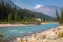 Rockies river scene royalty free stock photography