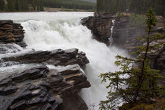 Rockies waterfall. Waterfall in the canadian rockies demonstrating raw power royalty free stock photography