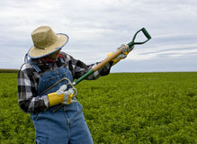Rockin' farmer Royalty Free Stock Images