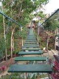 a rocking bridge over the park stock image