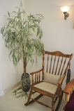 Rocking chair and plant in a house Royalty Free Stock Photos