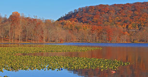 Rockland Lake Stock Photo