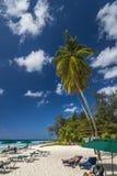 Rockley海滩巴巴多斯印度西部 免版税库存照片