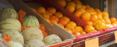 Rockmelons o cantalupo freschi Fotografia Stock Libera da Diritti