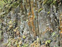 Rockowa faleza przy Dakigaeri wąwozem w Japonia obrazy stock