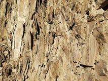 Rockowa formacja Blisko Banff Alberta Kanada obrazy royalty free
