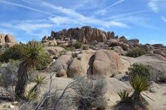 Rockowa formacja w Joshua drzewa parku narodowym, CA Obrazy Stock