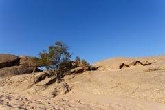 Rockowa formacja w Namib pustyni w zmierzchu, krajobraz Obraz Royalty Free