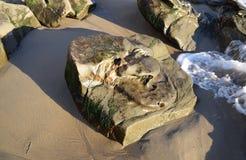 Rockowa formacja wzdłuż linii brzegowej blisko Cleo ulicy plaży w laguna beach, Kalifornia Obraz Stock