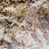 Rockowa powierzchnia z surrealistycznymi zawijasami Fotografia Royalty Free